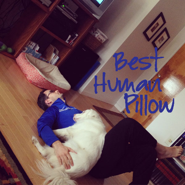 best human pillow